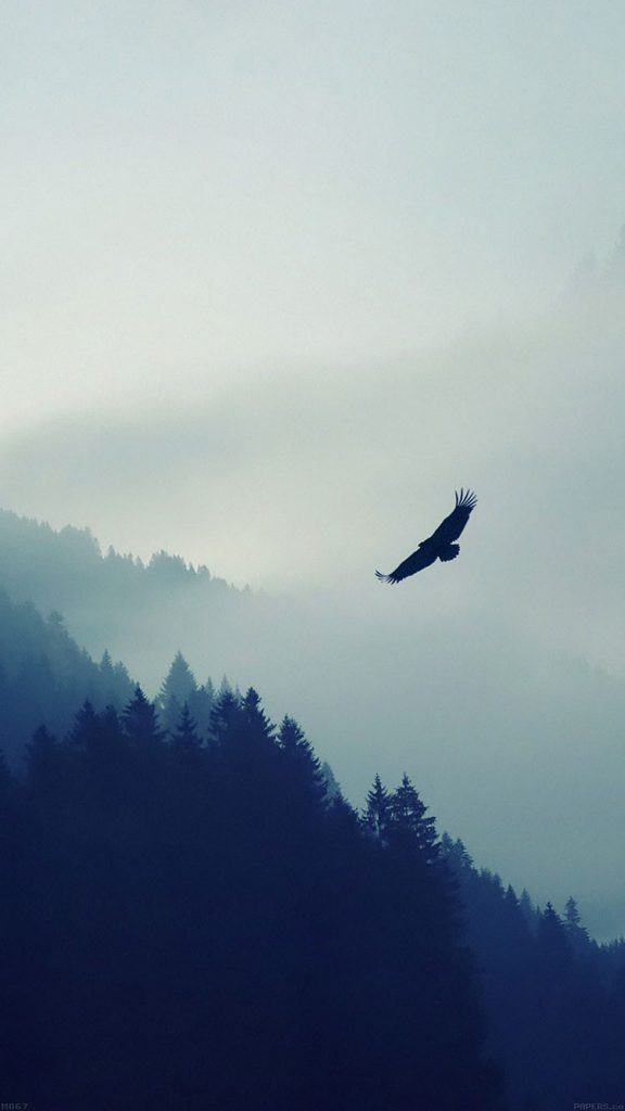 papers.co-md-eagle-mountain-fly-animal-iphone-wallpaper-PIC-MCH093454-576x1024 Awesome Wallpapers For Iphone 6 41+