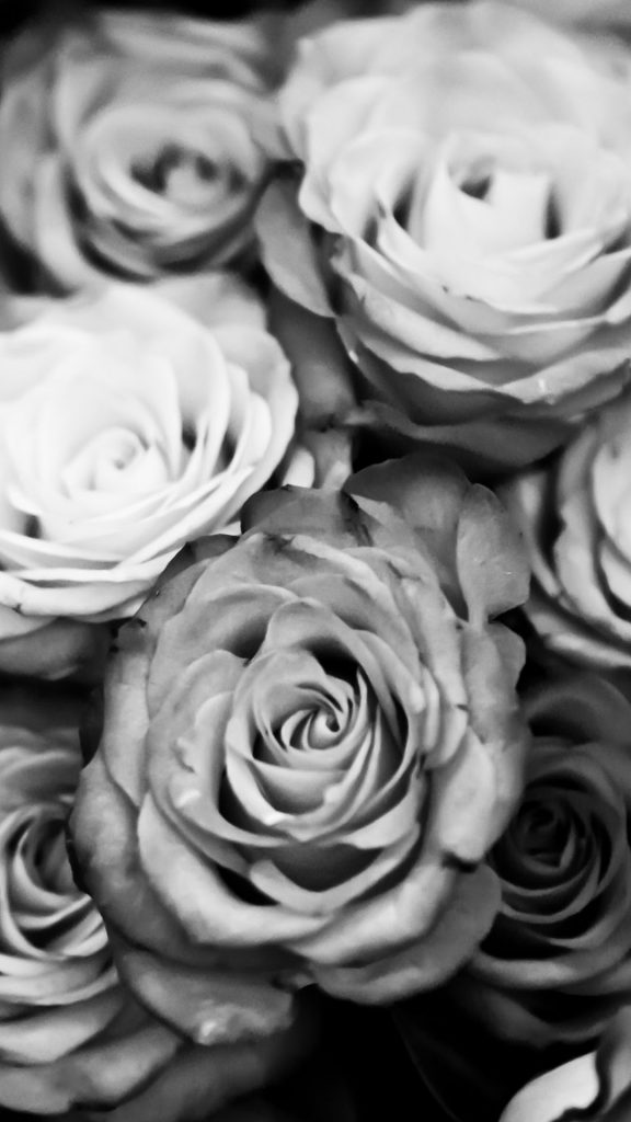 wallpaper.wiki-Black-And-White-iPhone-Wallpaper-Free-Download-PIC-WPD-PIC-MCH0112963-576x1024 Black Rose Iphone Wallpaper Hd 34+