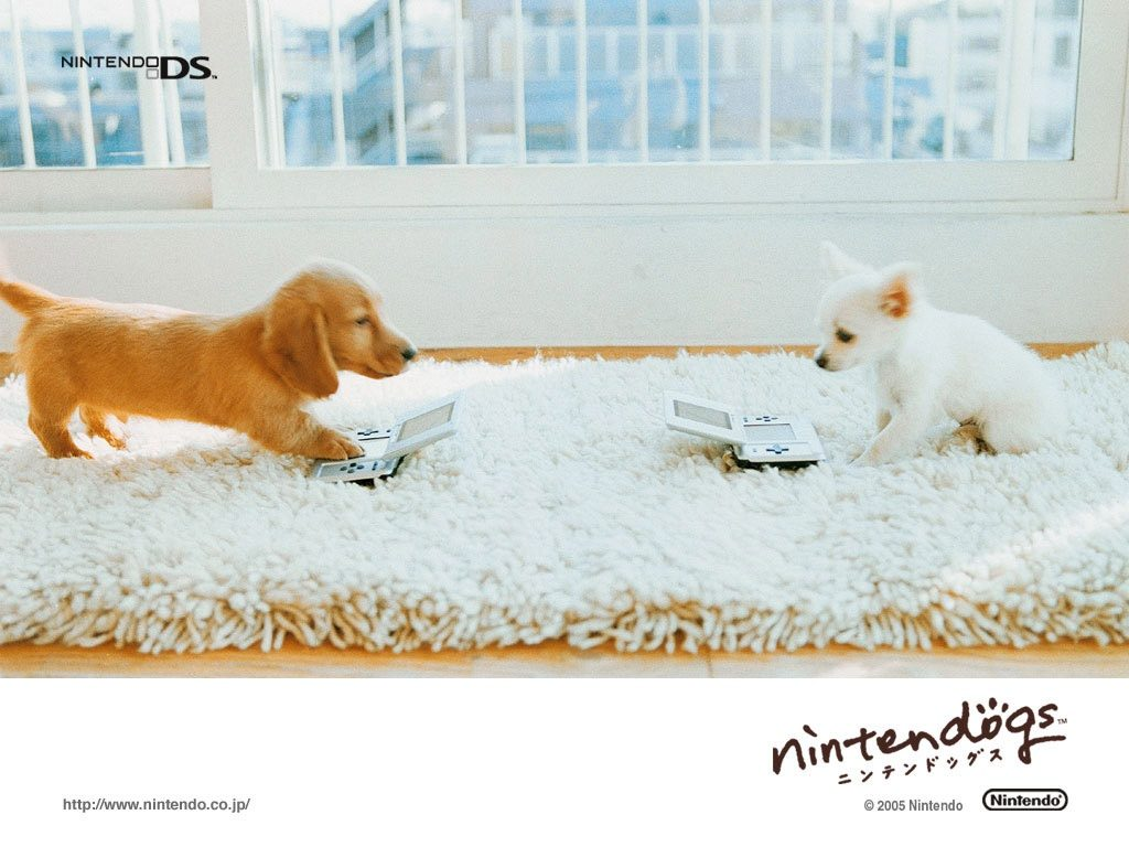 ws-Two-nintendo-dogs-x-PIC-MCH0119649-1024x768 Nintendo Wallpapers For Mac 46+